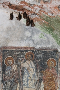 Some tiny kalderimi-side family churches have well preserved frescoes ... and small colonies of horseshoe bats.