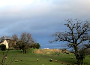 Perhaps this hilltop farm should be called Ararat, but it's just an abandoned boat with storm clouds behind