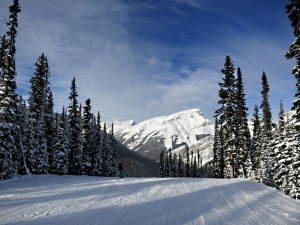 On the way down 'Banff Avenue' at Sunshine, a great run for practicing turns