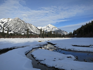 The warm spring water keeps narrow channels open snaking downstream through the thick ice