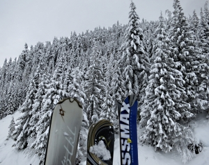 Skis slotted in the outside of the gondola passing trees heavily laden with fresh snow
