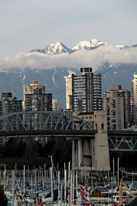 Masts, bridge, Tower-living .... snow capped mountains