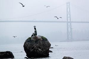 'Girl in wetsuit' keeping an eye on Lions' Gate Bridge