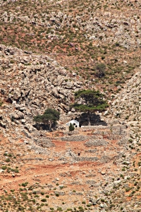 Zooming in on Agios Pavlos and its shade tree nestled under the crag