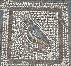 Ancient floor mosaic of the now much persecuted rock partridge