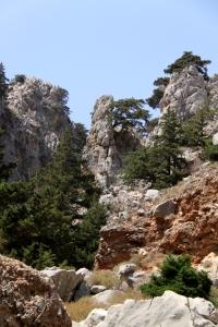 Rock pinnacles and bonzai pine trees add drama