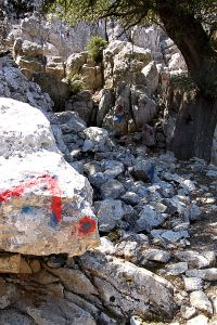 Paint marks the route up the crag