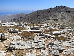 Rock slabs sharply inclined