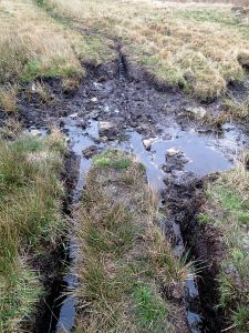One of the areas where ilegal off-road vehicles have cut though the peat and created mire