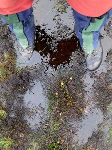 Over my boots but in places the mire was half way up my calf