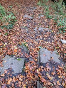 Stone sleepers which once carried the rails of the tramway