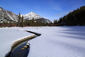 Standing on the ice in the middle of the river and looking downstream towards Cascade Mountain