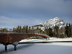 The new wooden pedestrian bridge, completed last year