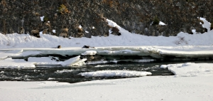 Mild weather and fast flowing water breaks up the ice on the river as it rushed towards the falls
