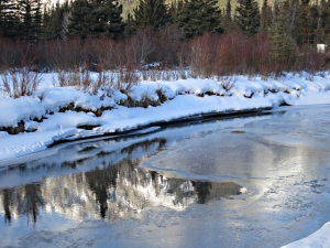 Thin ice reforming, water still reflective