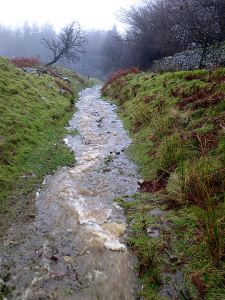 The path down to the Goose and Cuckoo off the mountain, normally dry even in wet weather