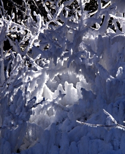 A hoar frost grotto