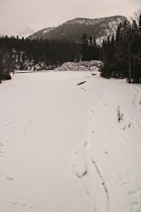 Looking along the snow-covered ice over the Spray River