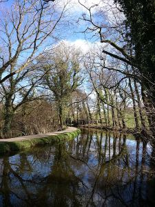 Reflections in the Abergavenny and Brecon Canal