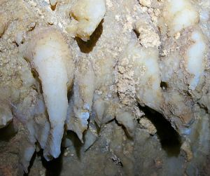 Intact white stalactites