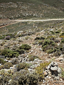 Looking down to where the paths from Livadia and to Tholos intersect the tarmac in the col