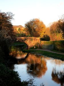 Autumn gold reflecting in the Abergavenny-Brecon Canal, the south east boundary of the National Park