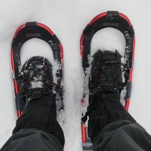 New snowshoes, off to look for deep snow