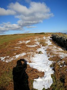 Remnant of snowdrift in the lee of a stone wall