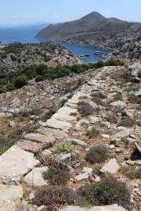 Looking down the stone-edged kalderimi to the harbour, cushions of thyme growing in the middle
