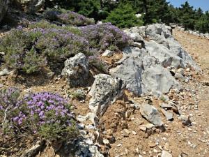 The rough track to Agios Nikitas Kotika monastery