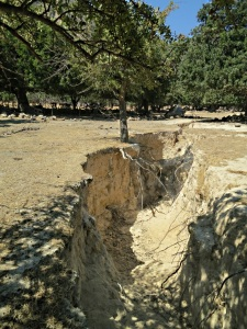 Part of the fissure which opened up in the tremor of 2003