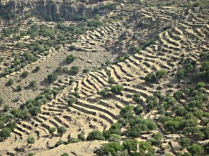 Looking towards the north, narrow agricultural terraces stretching from caldera floor to rim